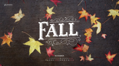 nov-14-my-first-fall-preview