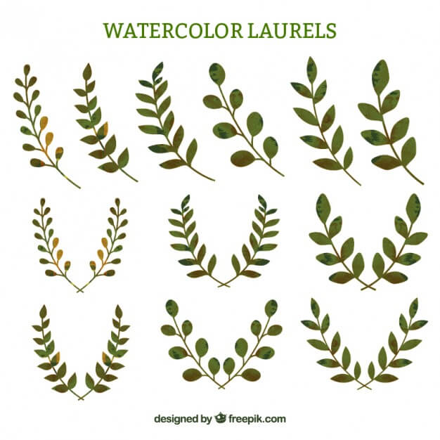 designup-wheat-free-vector-335-11